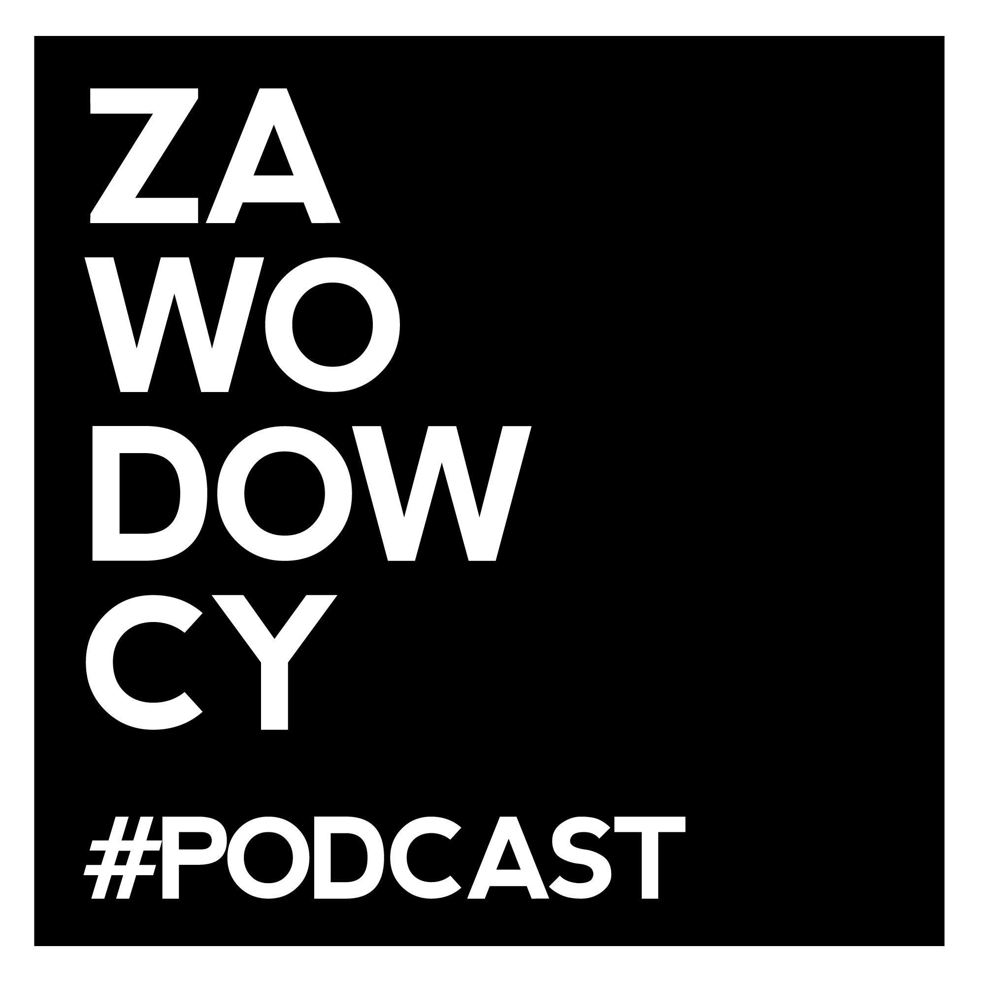 Podcast ZAWODOWCY – Karol Stryja